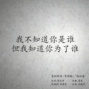 如果我再遇见你-蒋舟(MP3歌词/LRC歌词) lrc歌词下载 第2张