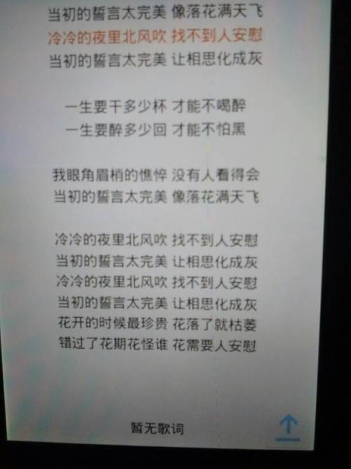 生如雪花-马天宇(MP3歌词/LRC歌词) lrc歌词下载 第1张