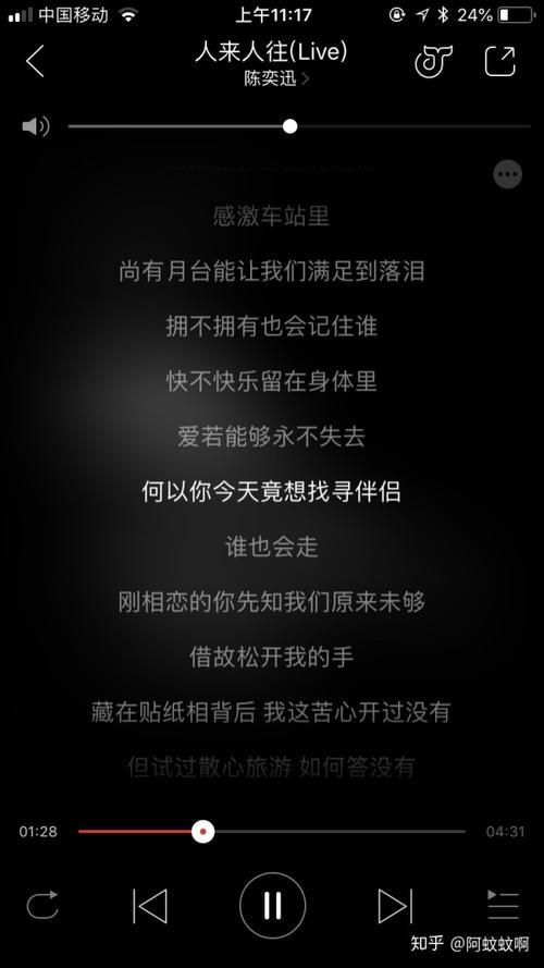 不愿让你走-苏芮(MP3歌词/LRC歌词) lrc歌词下载 第3张