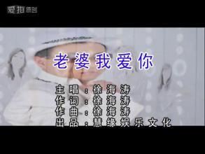 老婆我爱你-徐海涛(MP3歌词/LRC歌词) lrc歌词下载 第1张
