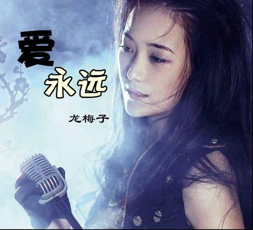 雄心无泪-龙梅子(MP3歌词/LRC歌词) lrc歌词下载 第3张