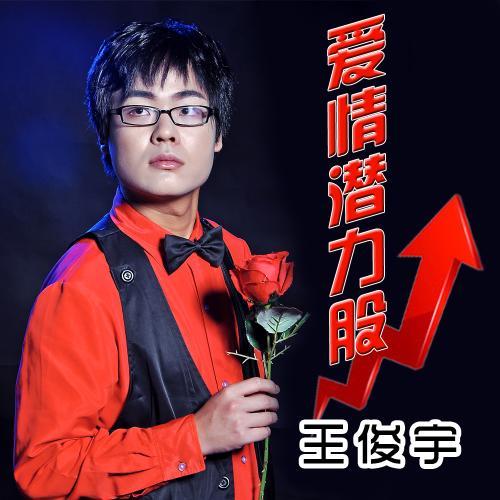 恋泪-王俊宇(MP3歌词/LRC歌词) lrc歌词下载 第3张