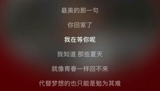 爱的足迹-毛阿敏(MP3歌词/LRC歌词) lrc歌词下载 第2张