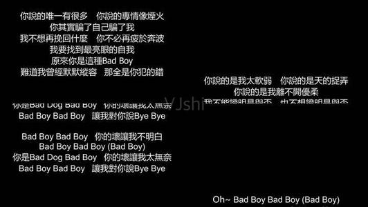 bad boy-张惠妹(MP3歌词/LRC歌词) lrc歌词下载 第1张