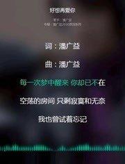 习惯-潘广益(MP3歌词/LRC歌词) lrc歌词下载 第2张