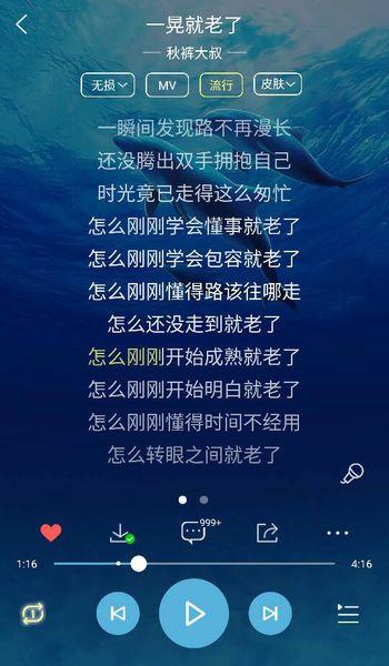 浪迹天涯-远方(MP3歌词/LRC歌词) lrc歌词下载 第1张