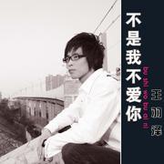 不是我不爱你-王羽泽(MP3歌词/LRC歌词) lrc歌词下载 第2张